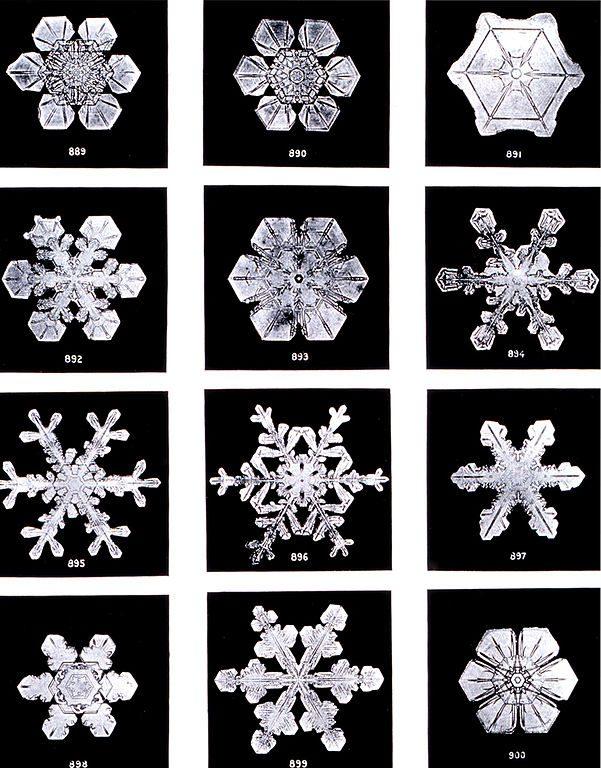 Several snowflakes