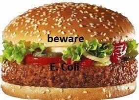 burger e. coli