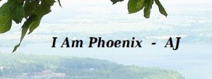 Image from I Am Phoenix