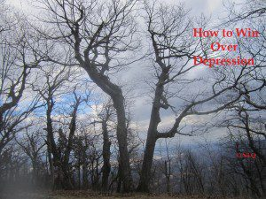 """""""How To Win Over Depression"""" review: 192 - 211 