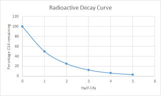 Radioactive decay curve from Ham's data
