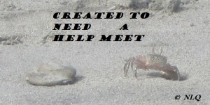 If you're wondering why NLQ uses a photo of a crab for this series try reading Part 1