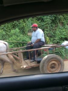 A farmer with his cart near the border between Nicaragua and El Salvador