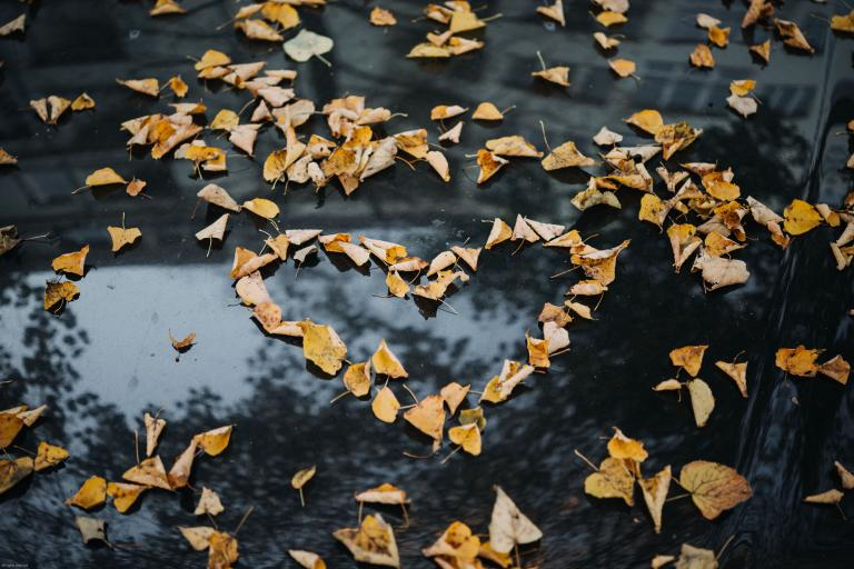 We all have a prayer in our heart yearning to be expressed. This contemplative exercise helps us sit quietly with our breath to find those prayers, which sometimes get muted out by our noisy, busy lives.