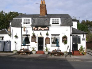 the-maypole-inn-1