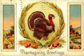 turkeys-2