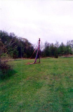 A Maypole in Michigan
