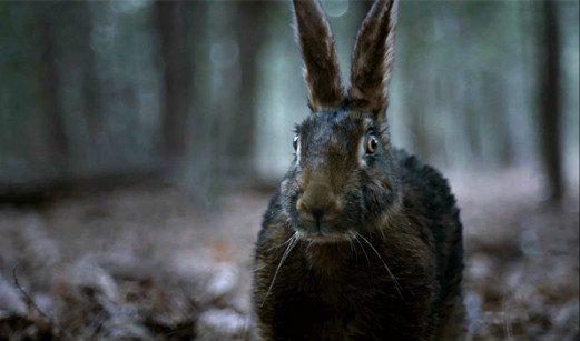 It's a rabbit!  No, it's a hare!  Actually, it's a witch!  Courtesy A24 Distribution.