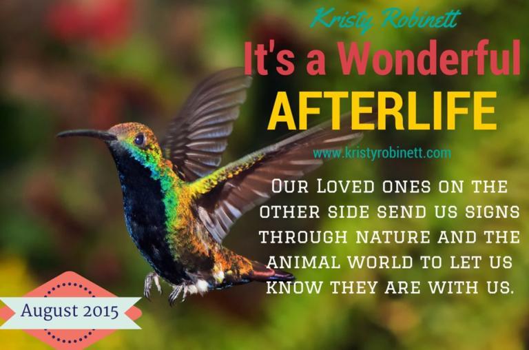 hummingbird_wonderfulafterlife