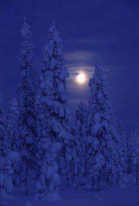 Kaamos ja kuu, Kuusamo, joulukuu 2001 Darkness and moon, Kuusamo, Finland, December 2001