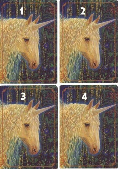 unicornoracle