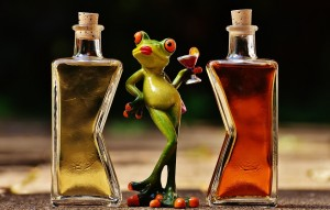 frogs-1650657_960_720 Alex_Fotos Pixabay  Free CC0 Public Domain No Attribution Required