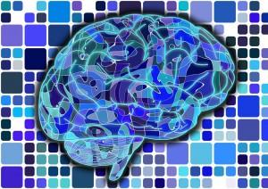 brain-951845_960_720 Geralt Pixabay FREE No Attribution Required
