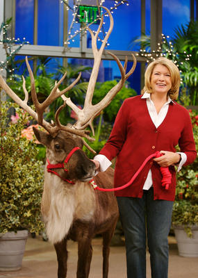 Martha Stewart, who does every holiday correctly. Photo, Martha Stewart Show.