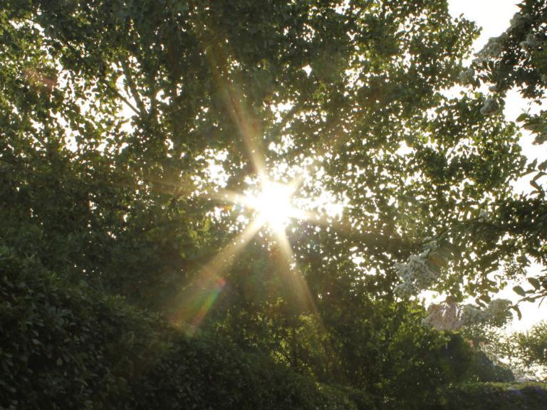 sunrise 07.12.14 03