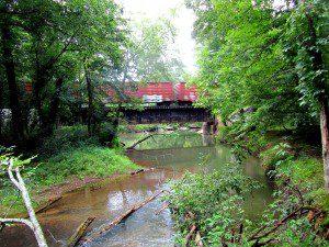 woods, a creek, a train - yep, it's North Georgia