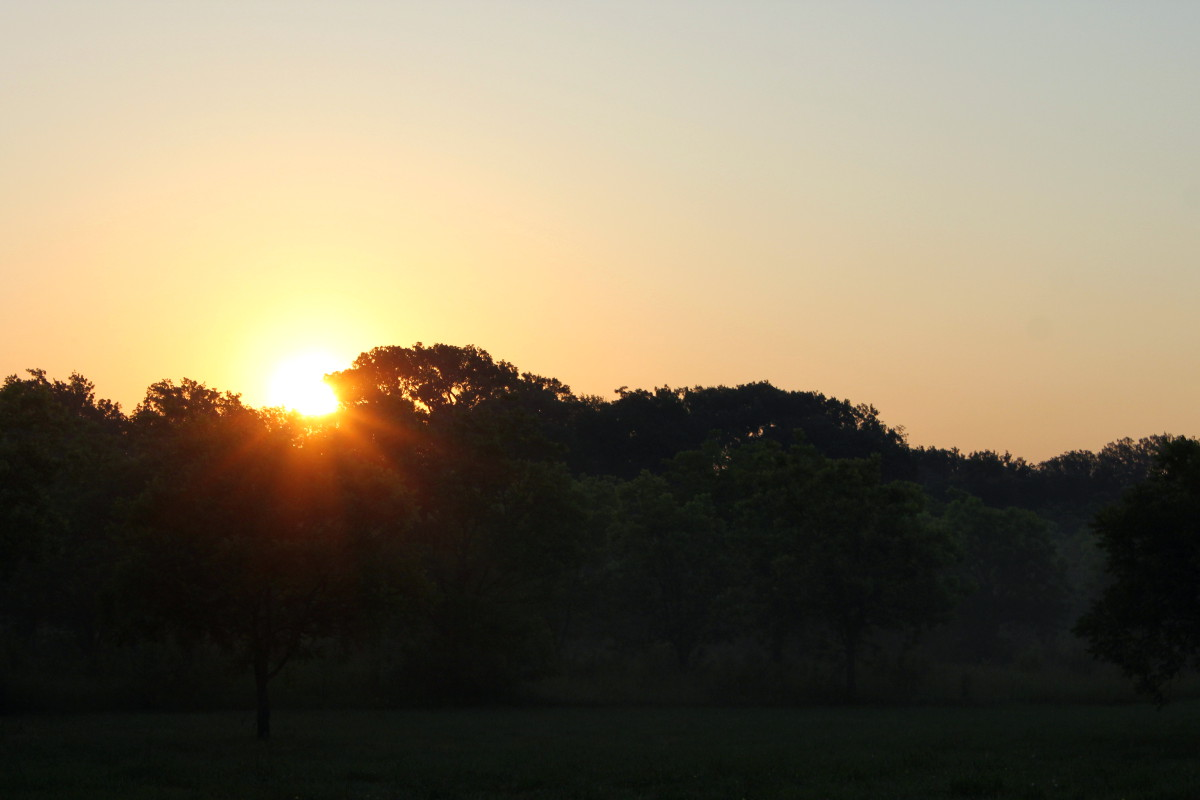 Sunrise June 2015 04