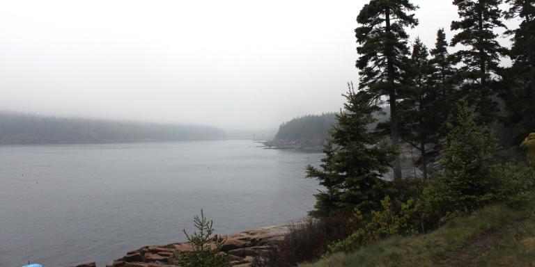 Acadia National Park 2013