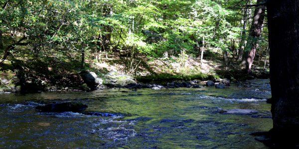 Bushkill Falls 2015 33 600x300