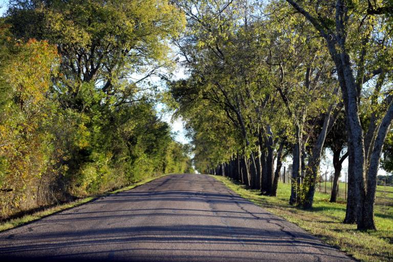 McKinney Texas 11.07.15 02
