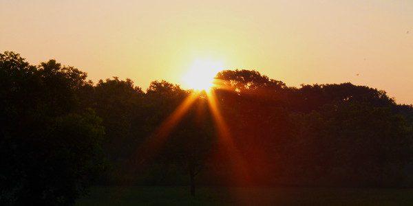 Sunrise June 2015 05 600x300