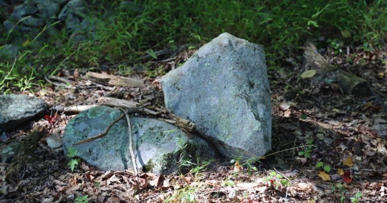 rocks at ECG 2015