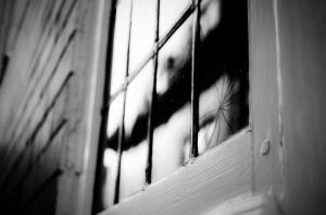 broken-old-window
