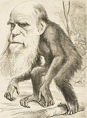 Koukl apologetics evolution