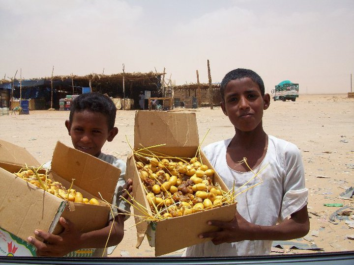 Children selling dates on the road to Shimaliyya State in Sudan. Credit: Hind Makki