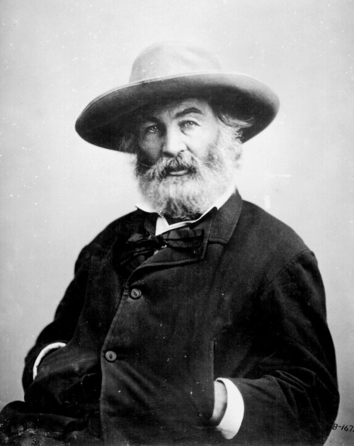 Walt Whitman by Mathew Brady, about 1862.