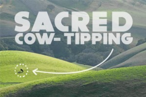 Sacred cow tipping