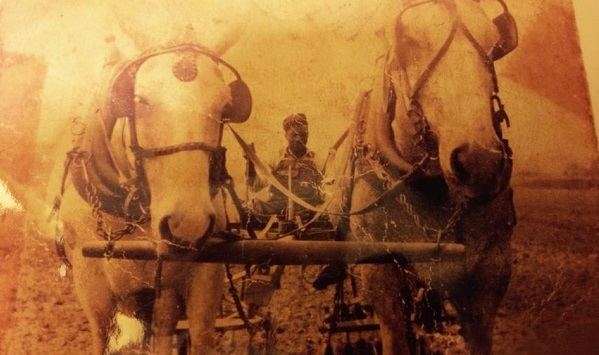 Margari Aziza Hill's great grandfather, Carlos Hilton, on his farm in Georgia