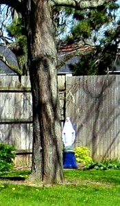 Mary behind tree