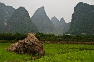 Image by  Jack Hynes (originally posted to Flickr as Stook in Guangxi) [CC BY-SA 2.0 (http://creativecommons.org/licenses/by-sa/2.0)], via Wikimedia Commons