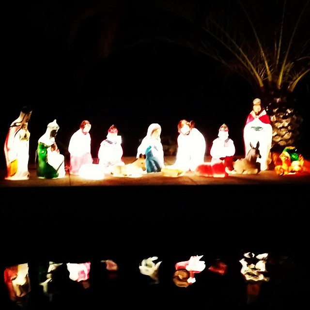 Our outdoor nativity set