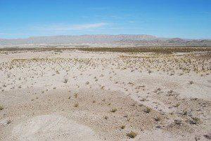 A_view_across_the_desert_landscape_of_Big_Bend_National_Park,_Texas