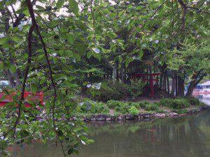 thumbnail_Shinto--Koi in Pond--Trees--Park