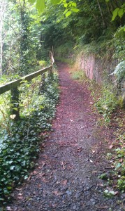 A path in the Dalkeith Country Park along the North Esk River