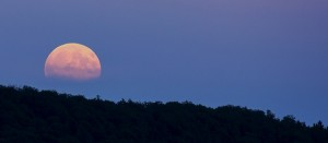 Full Moon by Nidan [CC0 Public Domain] on Pixabay