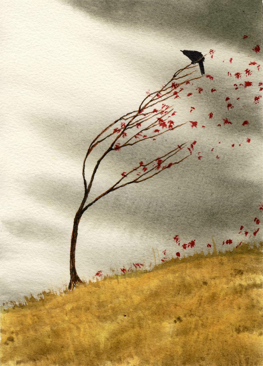 bird versus wind