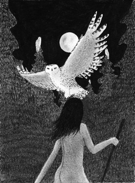 Sophia wisdom with owls.