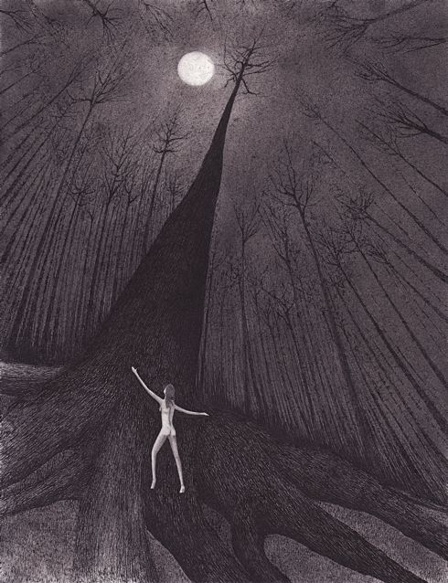 sophia rooted drawing by nakedpastor david hayward