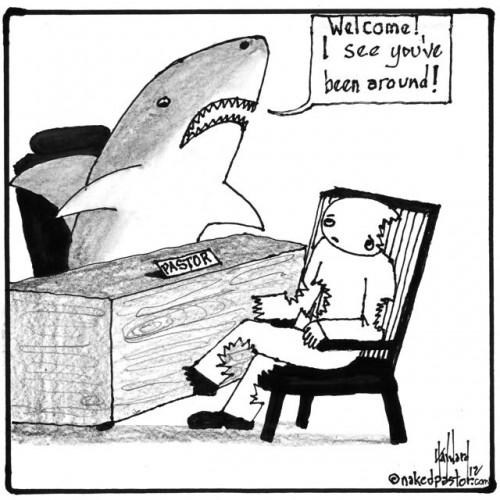 a shark's welcome cartoon by nakedpastor david hayward