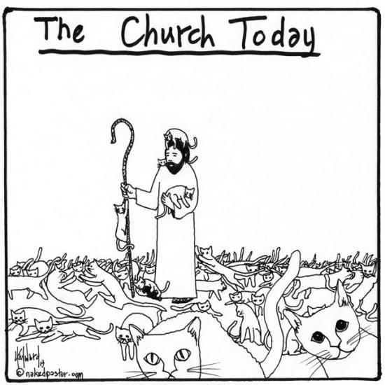 the church and herding cats cartoon by nakedpastor david hayward