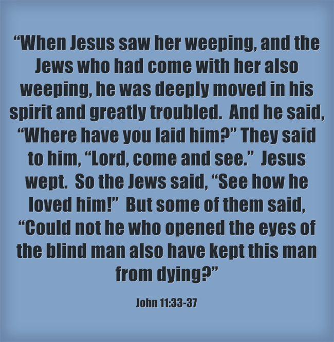 Jesus Raises Lazarus Bible Story: Summary, Lessons and Study