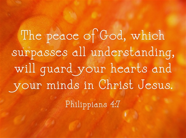 Philippians 4 Bible Study Commentary And Life Application Jack