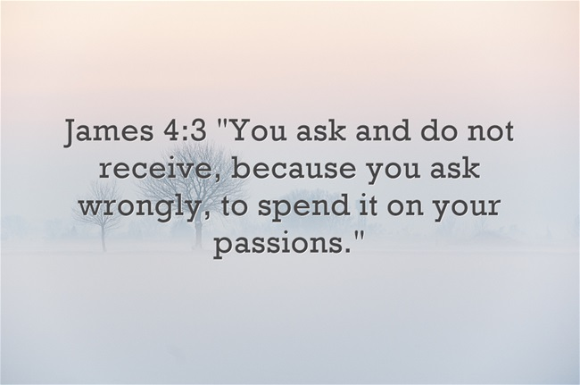 Bible Verses About Passion