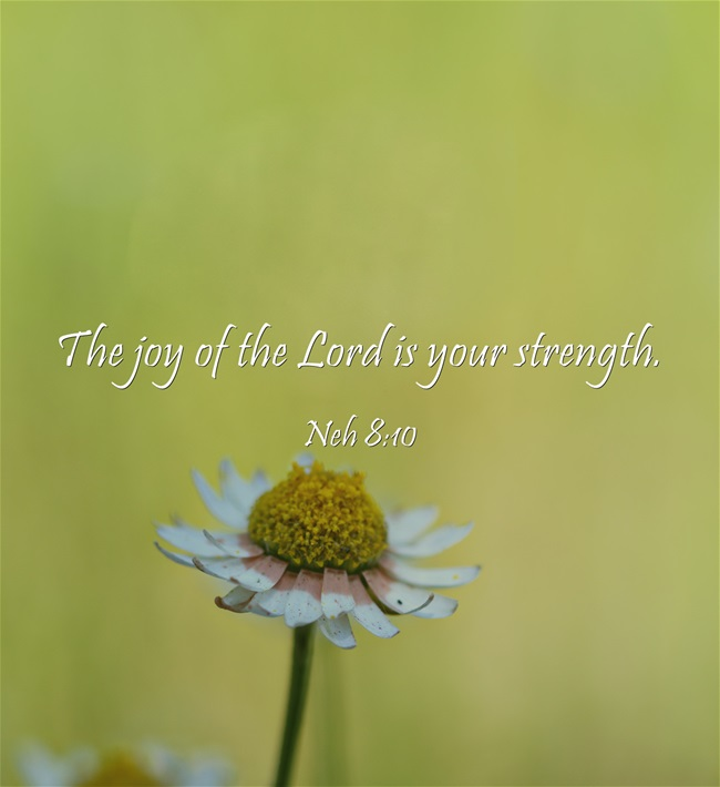 The-joy-of-the-Lord-is