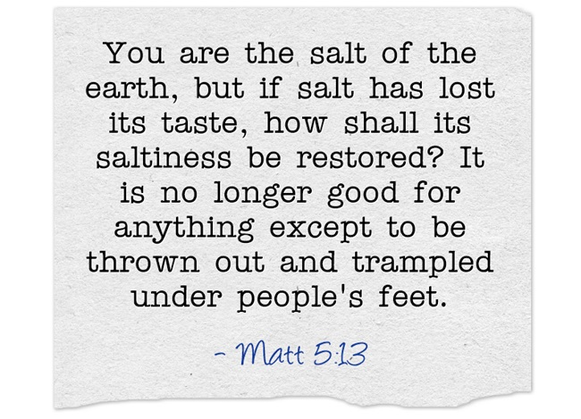 You-are-the-salt-of-the
