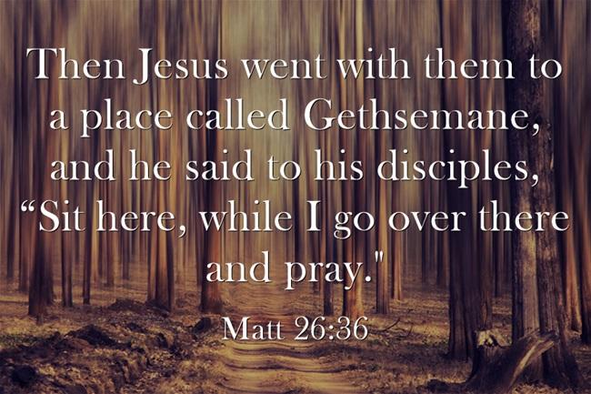 Who Was With Jesus In The Garden Of Gethsemane? | Jack Wellman